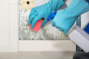 Health Problems Caused by Mold…and What to Do About It