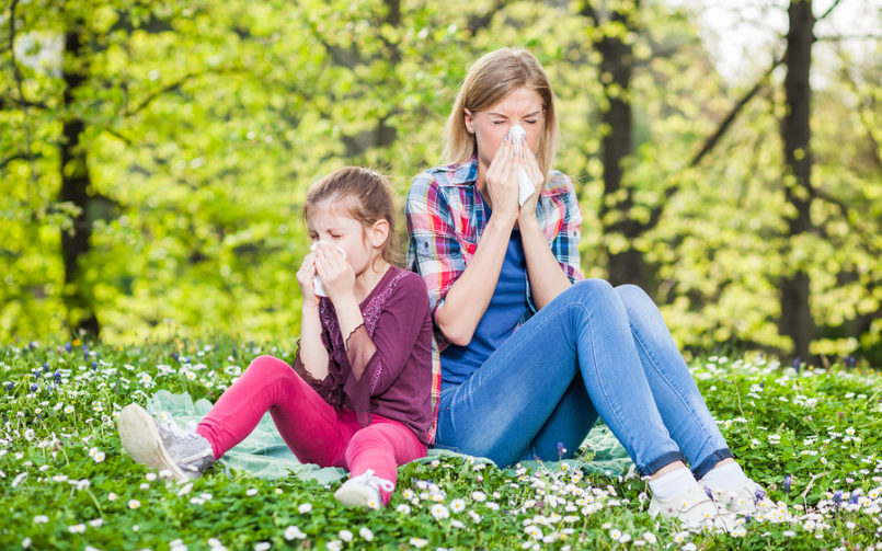 14 Allergy Prevention Tips