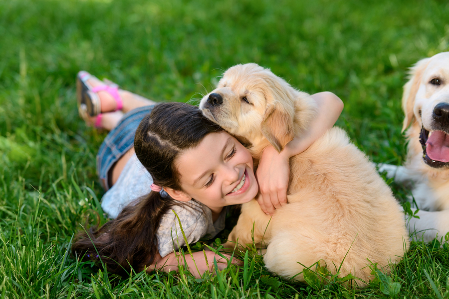 Happy Girl Playing with Golden Retriever Puppy on Grass